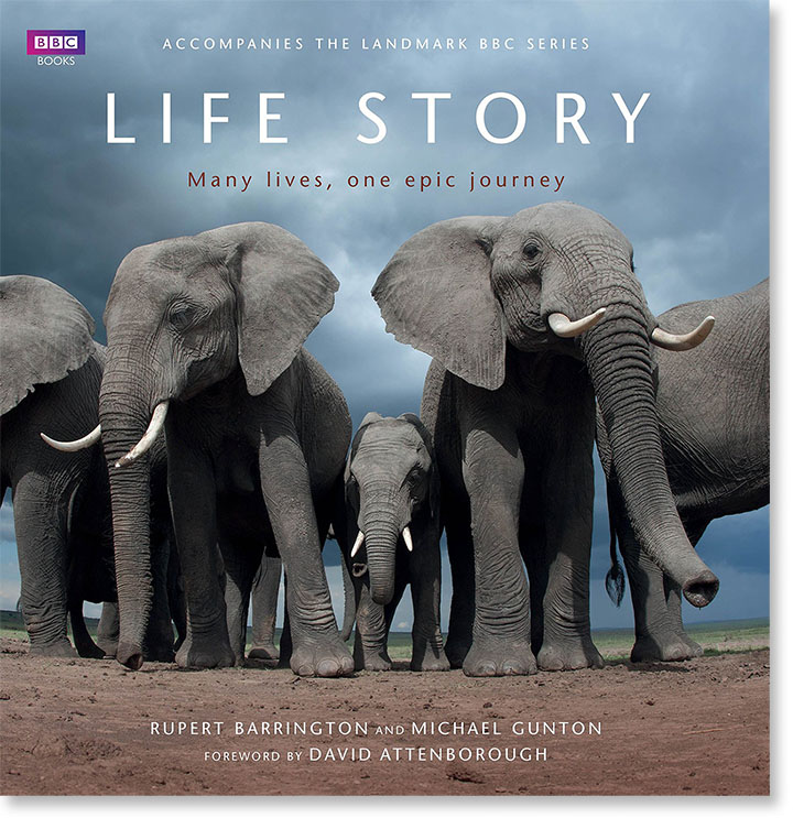 BBC Book - Life Story cover